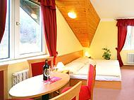 Hotel HARRACHOV INN *** ***, Harrachov